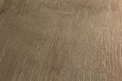 Stamped Overlay - Wood Plank